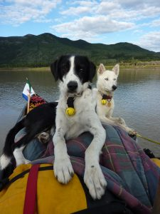Into the Wild Adventures, dog sledding tours and outdoor adventures in the Yukon Territory - About us - Speed and Oumiack