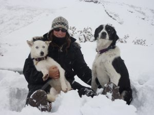 Into the Wild Adventures, dog sledding tours and outdoor adventures in the Yukon Territory - Marine, Oumiack and Speed